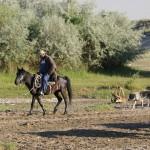 kasachischer Cowboy
