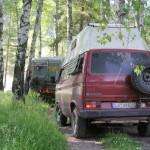 Fahrt zu unserem Stellplatz durch den Wald