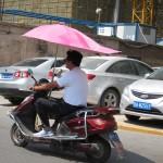 dieses nette Schirmchen hat fast jeder Roller