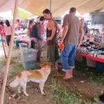 auf dem Mittwochsmarkt mit unserem Camp-Hund Foxi