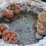 gekochte Eier im Hot Pot