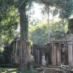 Phrea Khan- Angkor