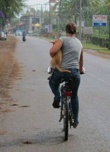 mit dem Fahrrad zum Markt
